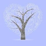Árbol con la corona en forma de corazón Fotografía de archivo libre de regalías