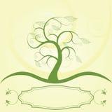 Árbol con la escritura de la etiqueta Imagen de archivo libre de regalías