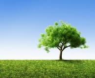 Árbol con la hierba ilustración del vector