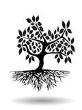 Árbol con la raíz Stock de ilustración
