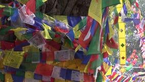 Árbol con las banderas budistas coloridas en Lumbini, Nepal metrajes