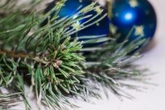 Árbol con las bolas azules imagen de archivo libre de regalías
