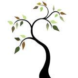 Árbol con las hojas 2 del resorte fotografía de archivo libre de regalías