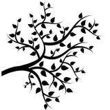 Árbol con las hojas Imágenes de archivo libres de regalías