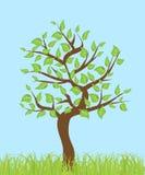 Árbol con las hojas ilustración del vector