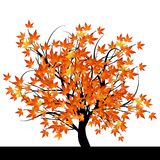árbol con las hojas de otoño stock de ilustración