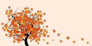 árbol con las hojas de otoño