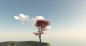 Árbol con las hojas rojas Imagen de archivo libre de regalías