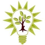 Árbol con las hojas y la bombilla Imagen de archivo libre de regalías