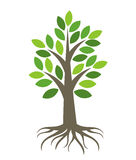 Árbol con las raíces stock de ilustración