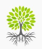 Árbol con las raíces libre illustration
