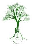 Árbol con las raíces de la bombilla Fotografía de archivo libre de regalías
