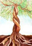 Árbol con las raíces sólidas Imagen de archivo libre de regalías
