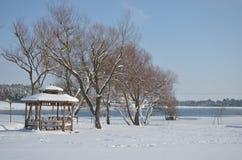 Árbol con un casquillo de la nieve cerca del pabellón en invierno Imagenes de archivo