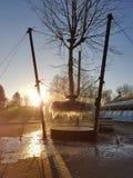 Árbol congelado de la ejecución Fotografía de archivo