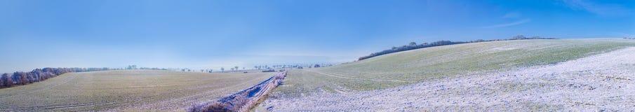 Árbol de abedul congelado en paisaje del invierno Fotografía de archivo