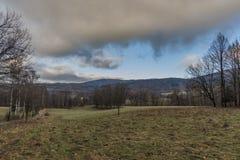 Árbol de abedul en prado cerca de la trayectoria a las montañas de Jizerske Fotos de archivo