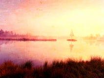 Árbol de abedul joven en la isla en el centro del lago del pantano Mañana púrpura con el nivel del agua pacífico en bosque Foto de archivo libre de regalías