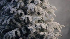 Árbol de abeto artificial cubierto con helada sin el soporte del ornamento interior metrajes