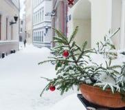 Árbol de abeto de la Navidad adornado con los globos Foto de archivo libre de regalías