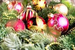 Árbol de abeto de la Navidad en fondo del tablero de madera con el espacio de la copia Imagen de archivo