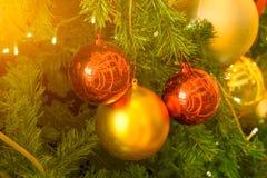 Árbol de abeto en festivales de los chirstmas con rojo y fondo de las bolas del oro Imagenes de archivo
