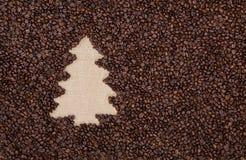 Árbol de abeto hecho de los granos de café fotografía de archivo libre de regalías