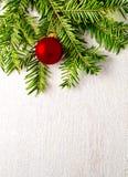 Árbol de abeto de la Navidad en el fondo blanco Fotografía de archivo