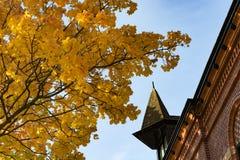 Árbol de arce amarillo en el cielo azul, el tejado de un viejo buil del ladrillo Imágenes de archivo libres de regalías
