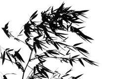 Árbol de bambú en el viento Fotografía de archivo