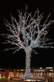 Árbol de Christas Imágenes de archivo libres de regalías