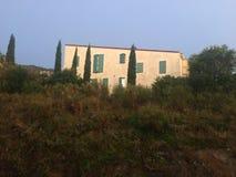 Árbol de ciprés francés de Collioure de la casa Fotografía de archivo libre de regalías