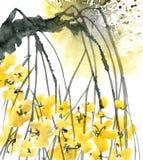 Árbol de ciruelo del flor Imagen de archivo