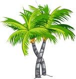 Árbol de coco de la historieta ilustración del vector