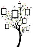 Árbol de familia con los marcos, vector Foto de archivo libre de regalías