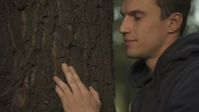 Árbol de familia conmovedora y del abarcamiento masculino, contacto con los antepasados, genealogía metrajes