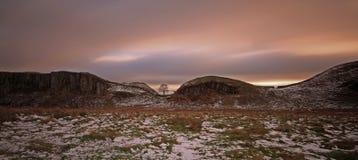 Árbol de Gap del sicómoro en Northumberland en invierno imagenes de archivo
