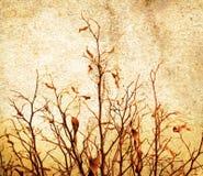 Árbol de Grunge foto de archivo libre de regalías