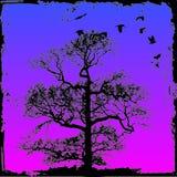Árbol de Grunge con el fondo Imagen de archivo libre de regalías
