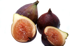 Árbol de higo de la fruta Fotografía de archivo libre de regalías