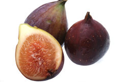 Árbol de higo de la fruta Fotografía de archivo