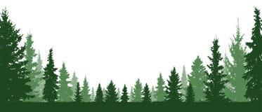 Árbol de hoja perenne del bosque, árboles coníferos, fondo del vector de la silueta ilustración del vector