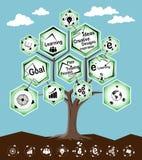Árbol de Infographic que aprende concepto Foto de archivo libre de regalías