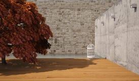 Árbol de Japón Imágenes de archivo libres de regalías