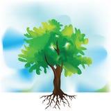 Árbol de la acuarela Imagenes de archivo