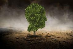 Árbol de la cabeza humana, ambiente, Evironmentalist imágenes de archivo libres de regalías