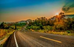 Árbol de la carretera y de abedul de asfalto debajo del cielo azul con las nubes Fotografía de archivo libre de regalías