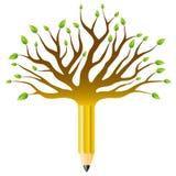 Árbol de la educación Imágenes de archivo libres de regalías