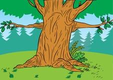 Árbol de la historieta en el bosque stock de ilustración