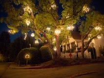 Árbol de la lámpara, ángeles del Los, California, los E.E.U.U., arte al aire libre de la calle imágenes de archivo libres de regalías
